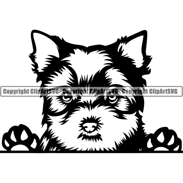 Yorkshire Terrier Peeking Dog Breed ClipArt SVG
