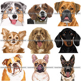 27 Dog Breed Head Face Top Selling Color Designs SUPER BUNDLE ClipArt SVG
