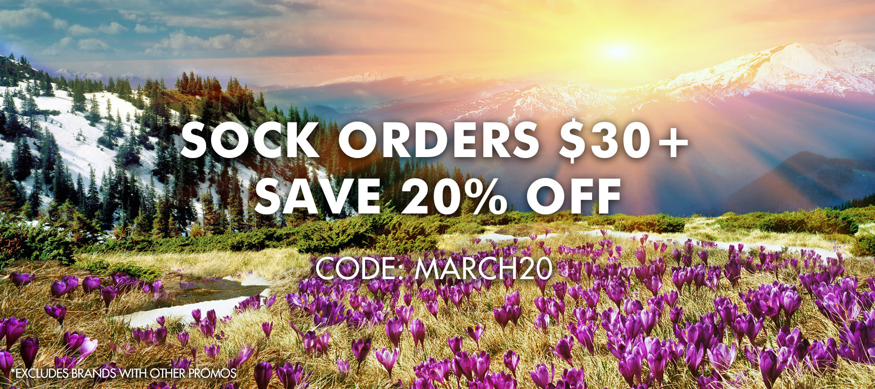 Save 20% off sock orders over $30 using code MARCH20