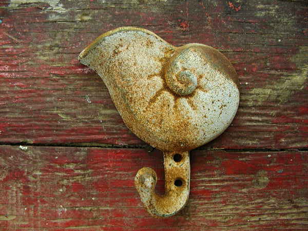 Shell Hook - Ships Free - Rustic Beach Decor - Beach Lover Gift - idugitup