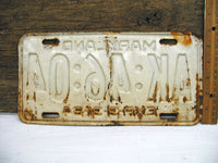 Vintage Maryland MD License Tag Plate - 1964 White Rusty - Free Ship