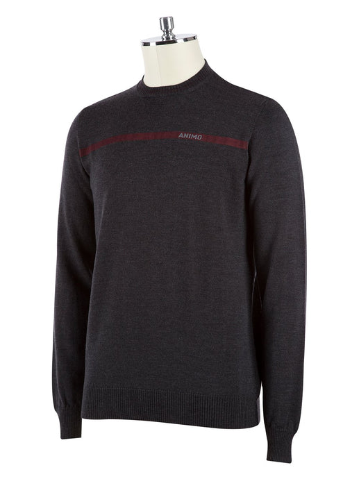 AW REIMAR MENS JUMPER