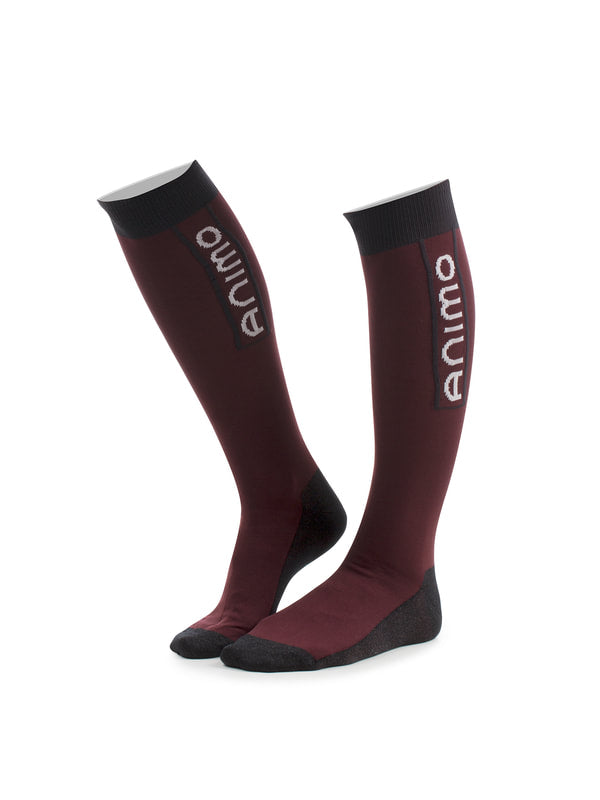 TESY SOCKS AW19 NEW - Reform Sport Equestrian Clothing