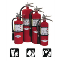 ABC Dry Chemical Fire Extinguisher:FireHoseSupply.com