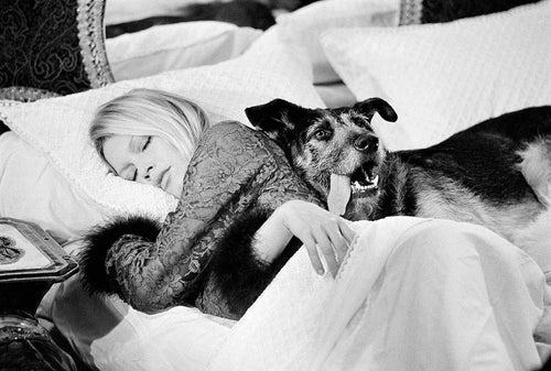 Co-Signed Brigitte Bardot With Dog