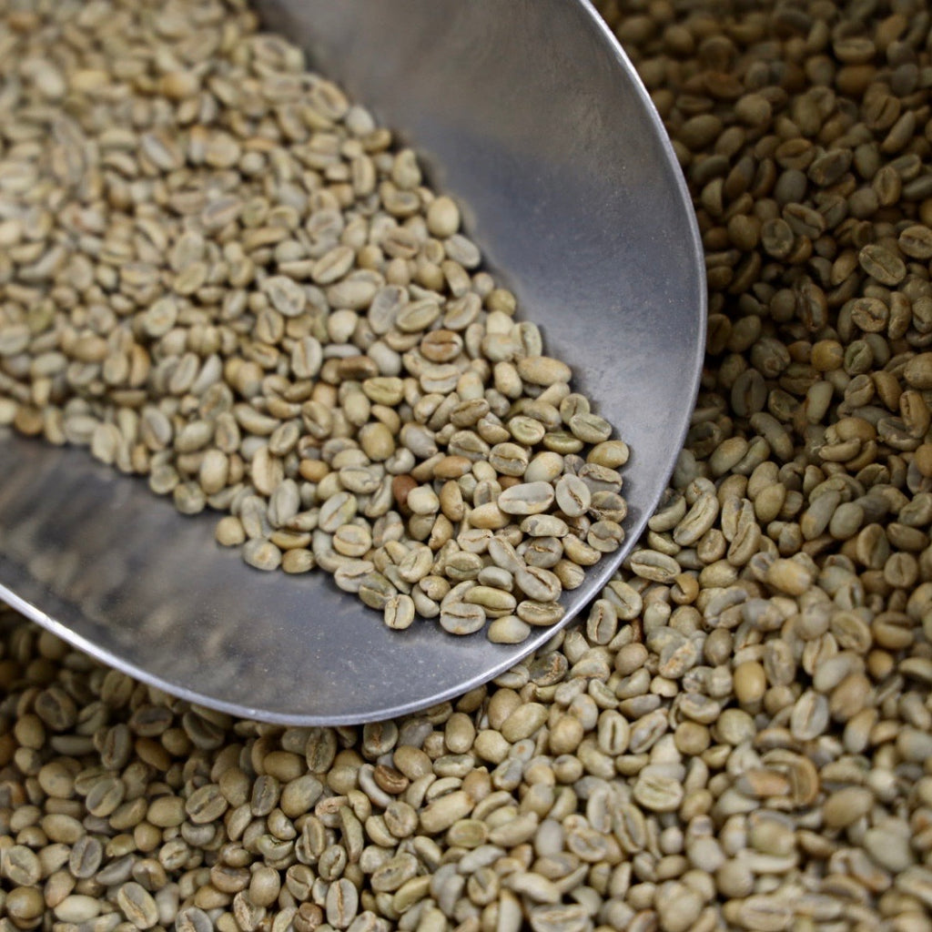 【Domestic Only】ETHIOPIA Yirgacheffe Aramo Natural