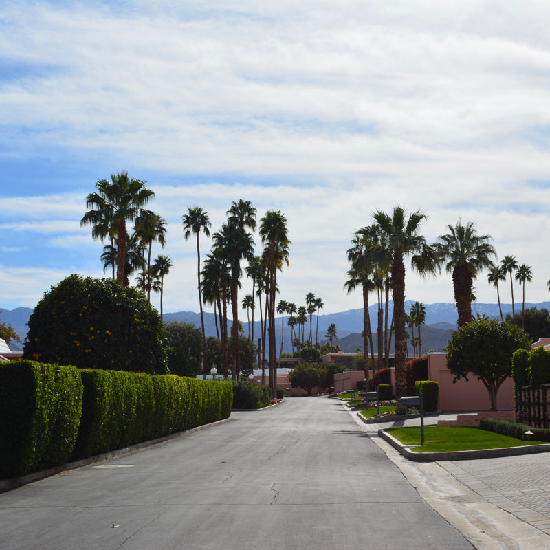 Sporting Girl's Guide to Palm Springs