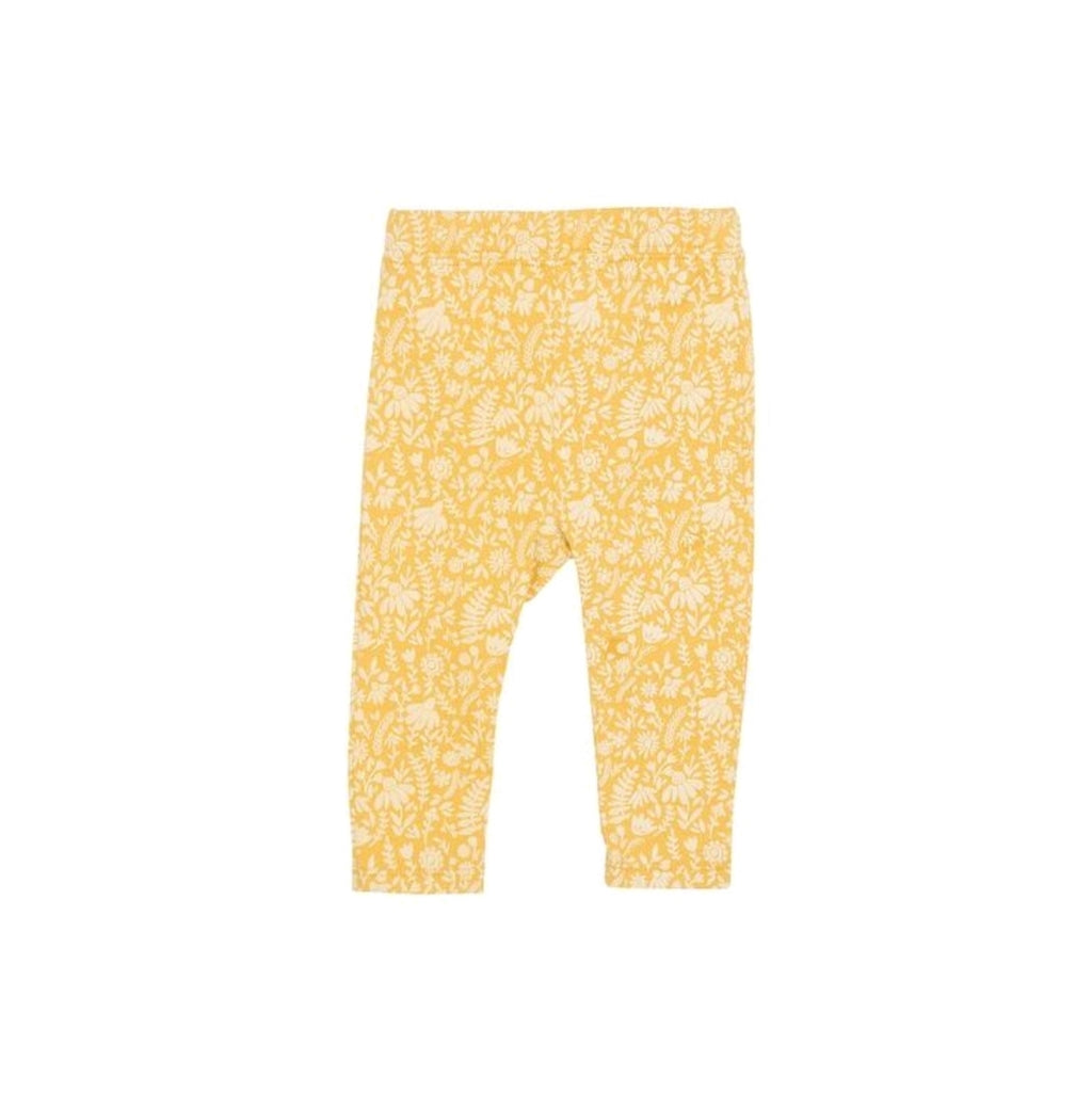Legging Goldenrod