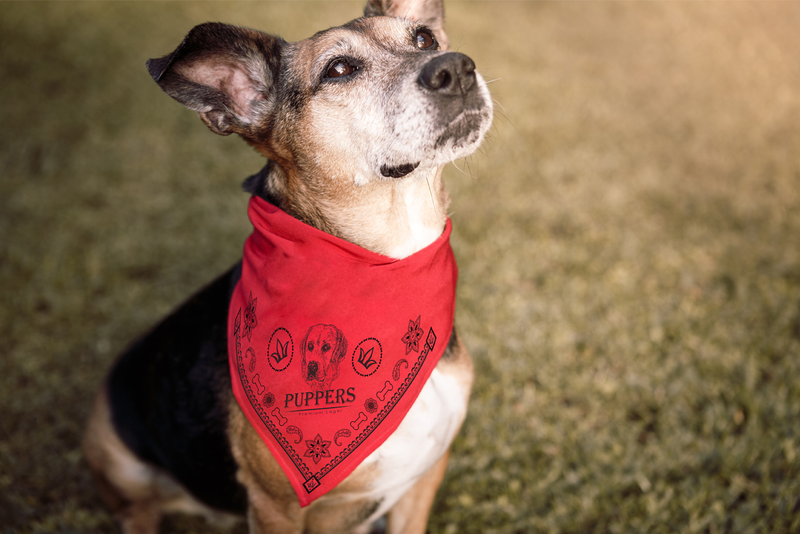 Puppers Red Dog Bandana