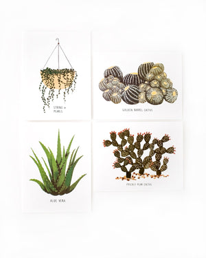 Succulents Cards Set