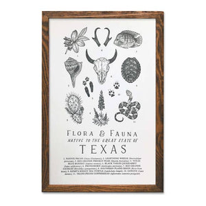 Texas Field Guide Letterpress Chart