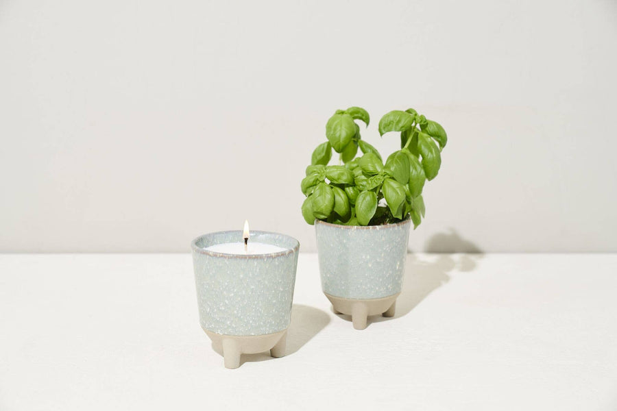Basil Kit - Glow & Grow Candle