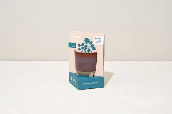 Daisy Kit - Glow & Grow Candle