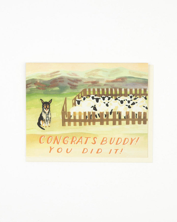 Sheep Dog Congratulations Card