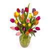 18 Rainbow Tulips with Vase
