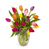 25 Rainbow Tulips with Vase