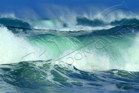 Ocean's Fury Canvas Print