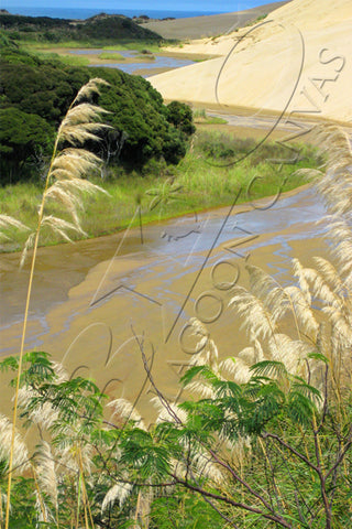 Windy River Canvas Print