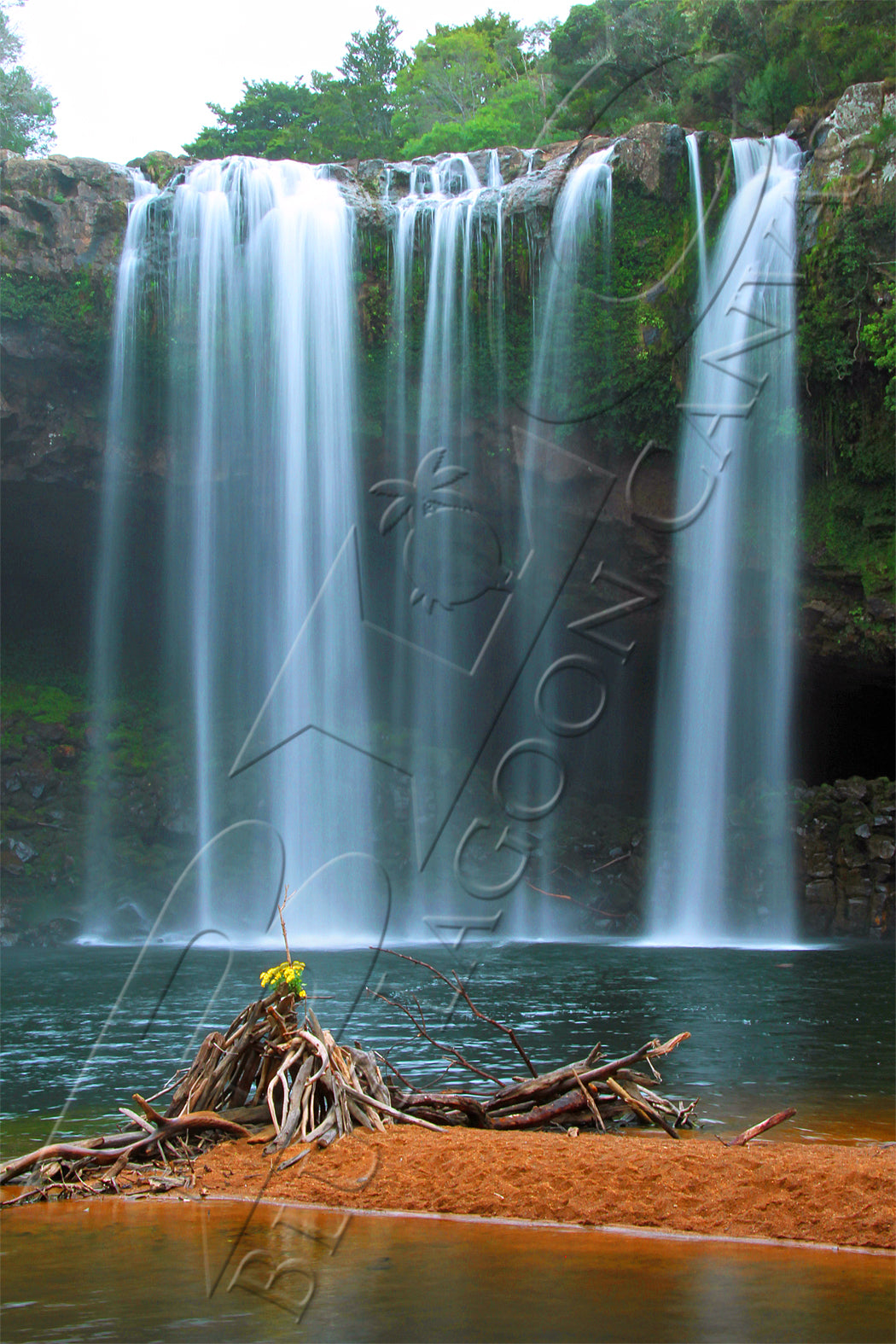 Yellow Flower Waterfall Canvas Print