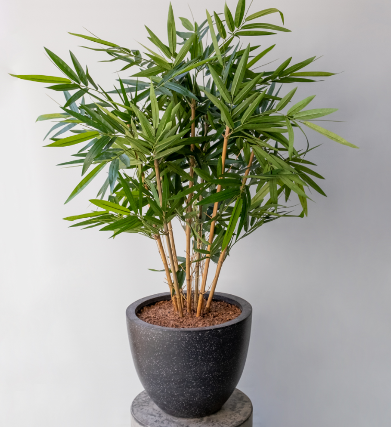 FAKE HOUSE PLANTS ARE GREAT TO USE IN YOUR KITCHEN OR IN YOUR CAFÉ!