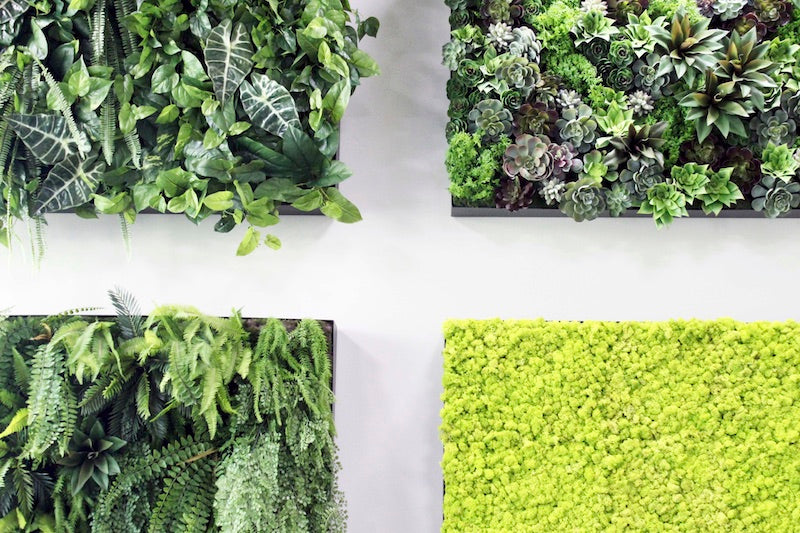 Using an Artificial Wall Garden in your home