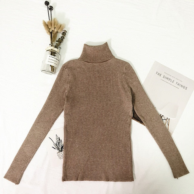 Basic Thin Turtleneck Knitted Sweater