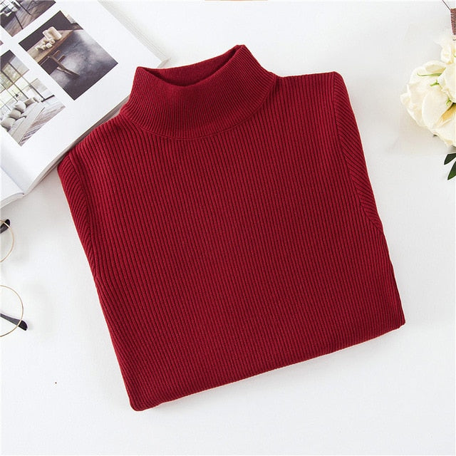 Casual Simple Turtleneck Knitted Sweater