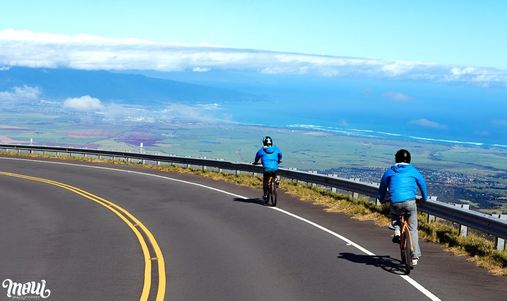 biking down Haleakala
