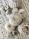 DIY: Moroccan Pumpkin Decorating