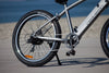 The Santa Monica eBike - Medium to Large Cruiser