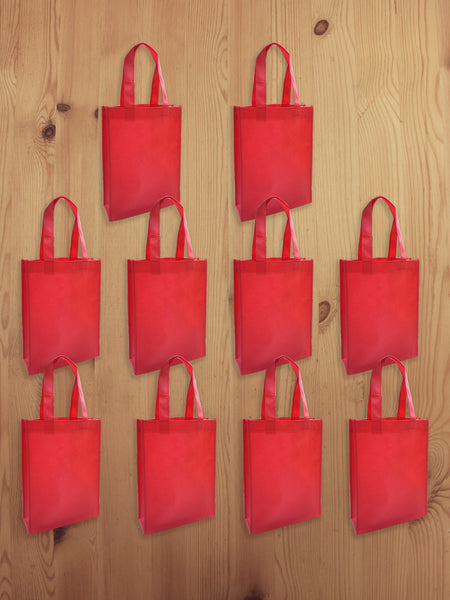 Non-woven Gift Eco-small Bag 10pcs