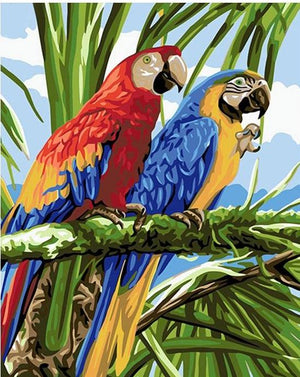 Pair of Parrots - DIY Paint By Numbers Kit - The Paint By Number