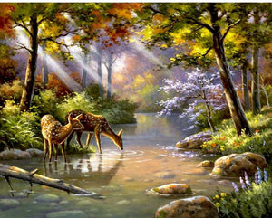 Deer Drinking from a Stream - DIY Paint by Numbers Kit - The Paint By Number