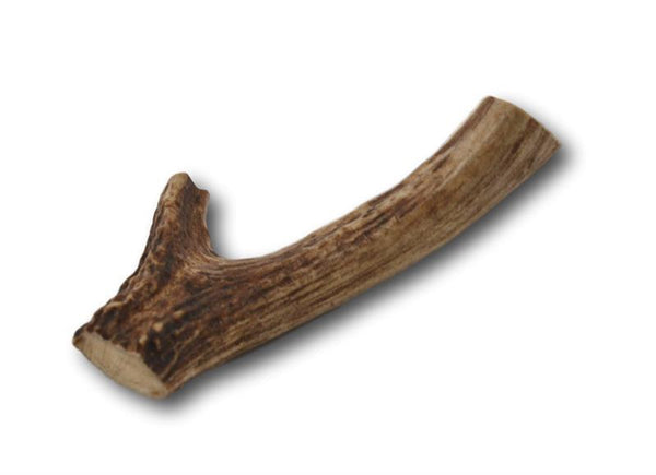 Deer Antler Dog Treats - Medium - 1 Piece - Top Dog Chews