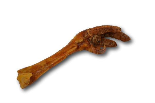 Turkey Feet - 1 Piece - Top Dog Chews