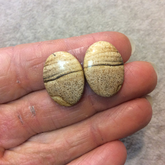 OOAK Matching Pair of Natural Picture Jasper Oval Shaped Flat Back Cabochons - Measuring 15mm x 21mm, 4mm Dome Height - Quality Gemstone
