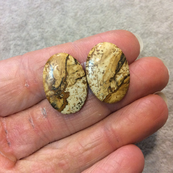 OOAK Matching Pair of Natural Picture Jasper Oval Shaped Flat Back Cabochons - Measuring 16mm x 23mm, 3mm Dome Height - Quality Gemstone