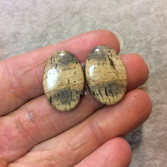 OOAK Matching Pair of Natural Picture Jasper Oval Shaped Flat Back Cabochons - Measuring 16mm x 23mm, 4mm Dome Height - Quality Gemstone