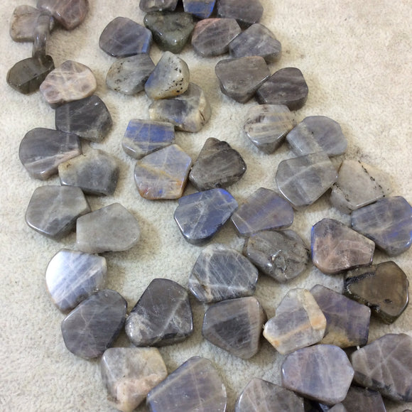 18mm Smooth Top-Drilled Natural Labradorite Freeform Slab Shaped Beads with 1mm Holes - 15.5