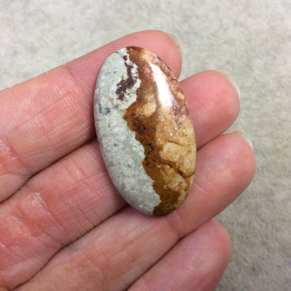 Natural American Picture Jasper Oblong Oval Shaped Flat Back Cabochon - Measuring 21mm x 37mm, 5mm Dome Height - High Quality Gemstone