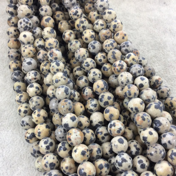 8mm Glossy Finish Natural Dalmatian Jasper Round/Ball Shaped Beads with 2mm Holes - 7.75
