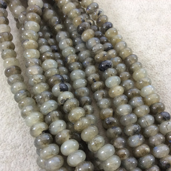 5mm x 8mm Glossy Finish Natural Grade A Labradorite Rondelle Shaped Beads with 2mm Holes - 8