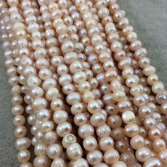 8-9mm AB Quality Natural LARGE HOLE Freshwater Pearl Peach Potato Shaped Beads - 15.5