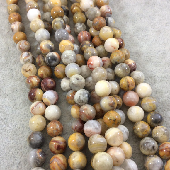 8mm Smooth Round/Ball Shaped Multicolor Yellow Crazy Lace Agate Beads - 15.25