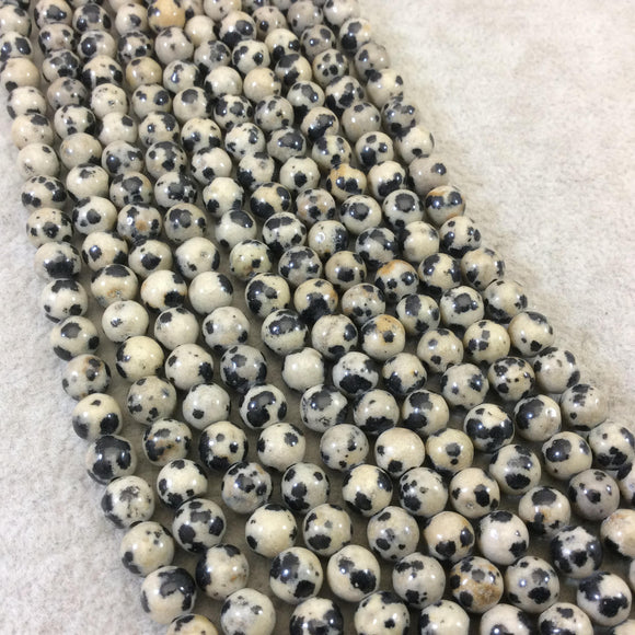 6mm Natural Cream and Black Dalmatian Jasper Smooth Glossy Round/Ball Beads W 1.5mm Holes - 7.5