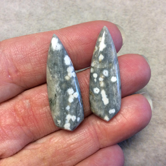 OOAK Pair of Natural Ocean Jasper Pointed Teardrop Shaped Flat Back Cabochons - Measuring 12mm x 35mm, 5mm Dome Height - Quality Gemstone