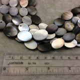 "Smooth Flat Oval Shaped Iridescent Black Lip Shell Beads - 16"" Strand (Approx. 22 Beads) - Measuring 13mm x 18mm - Natural Shell Beads"