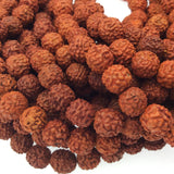 10mm Natural Rudraksha Seed Beads with 2mm Holes - Sold by the Strand - 108 beads per Strand