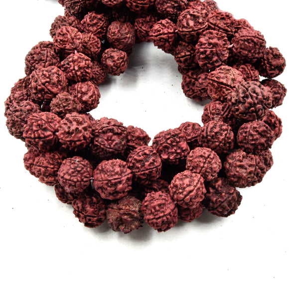 Rudraksha Seed Beads | 18mm Natural Red Rudraksha Seed Beads with 2mm Holes - Sold by the Strand - 108 beads per Strand