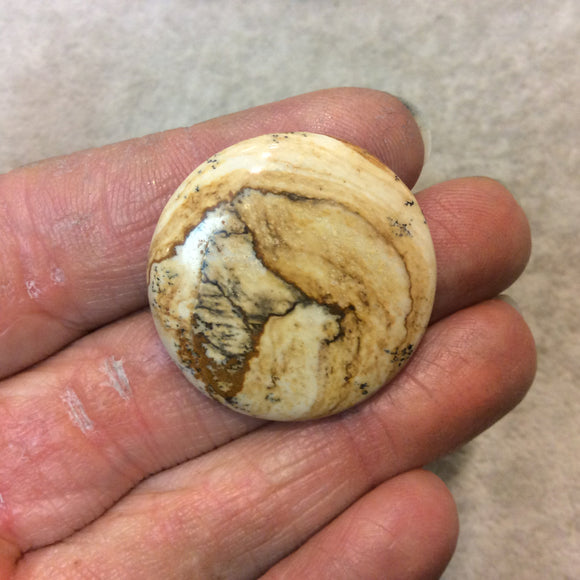 OOAK Natural Picture Jasper Round/Coin Shaped Flat Back Cabochon - Measuring 31mm x 31mm, 5mm Dome Height - High Quality Gemstone Cab
